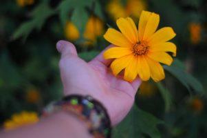 Những khoảng lặng thân thương mang theo nét vô thường ngày nắng…